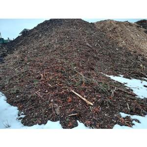 Надзорные органы подтвердили выявленные ОНФ нарушения природоохранного законодательства в Заозерье