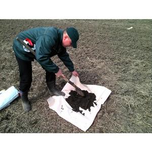 О выявлении загрязнения почв в Волгоградской области в ноябре