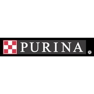 Открыт прием заявок на участие в премии Purina BetterwithPets