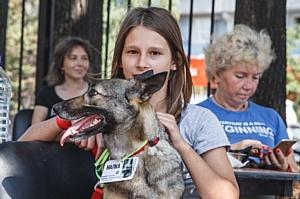 Мосприрода помогла бездомным животным обрести дом
