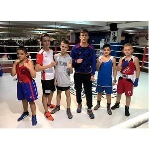5 ноября состоялся турнир по боксу спортшкол Москвы и МО