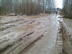 Кировские активисты ОНФ составили «народные рейтинги» требующих ремонта дорог