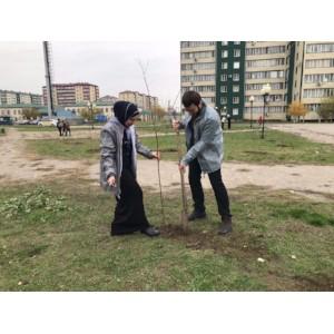 Команда «Молодежки ОНФ» в Чечне провела акцию по озеленению городского парка