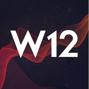 Скам не пройдет. Маркетплейс и блокчейн протокол W12 решит главную проблему рынка криптовалют