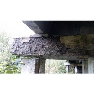 ОНФ напомнил властям о ремонте моста в воронежском Приволье