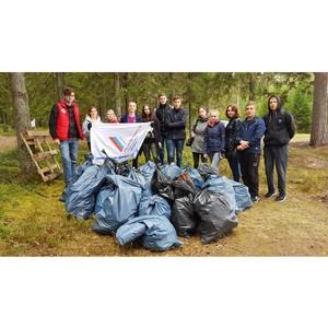 ОНФ в Карелии и Ленинградской области провел экологическую акцию по уборке берегов Онежского озера