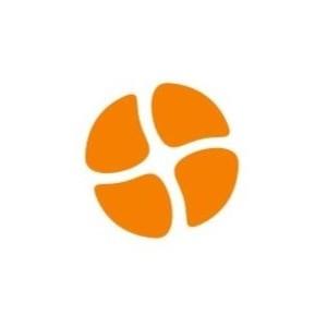 ОТР вошла в десятку ведущих поставщиков ИТ-решений для госсектора