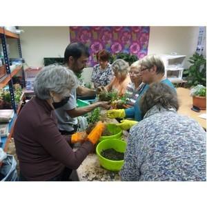 Москвичи старшего возраста осваивают современное растениеводство