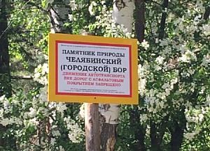 Активисты ОНФ в Челябинской области выступили против уничтожения городского бора