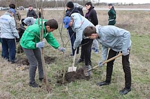Активисты ОНФ в Чечне провели экологическую акцию по борьбе с эрозией почвы