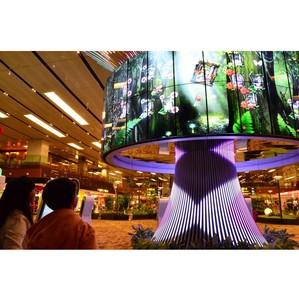 LG и Changi Airport Group создали «Древо Общения»