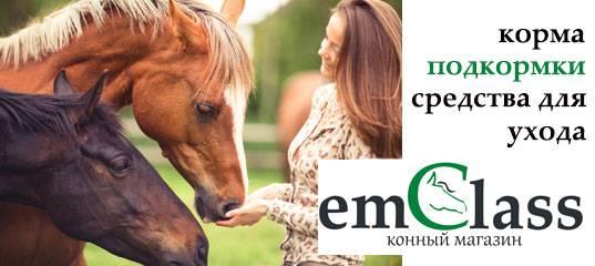 конный магазин emclass - товары для лошадей