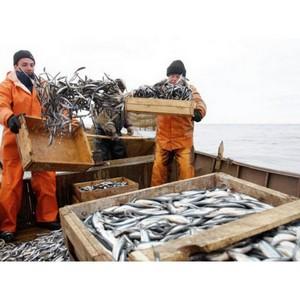 Рыбаки просят поддержки
