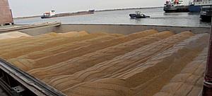 О транзите продовольствия через Ростовский речной порт в январе 2017 г.