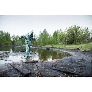 ГК Корпорация «ГазЭнергоСтрой» ликвидирует свалки в Дзержинске