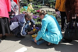 Донские садоводы и дачники консультировались в «Дачный сезон»