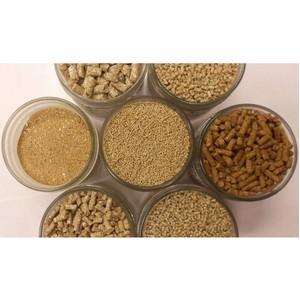 Бактериологическая безопасность пшеничных отрубей