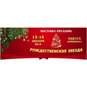«Рождественская звезда» приглашает в мир новогодних подарков и праздничных развлечений!