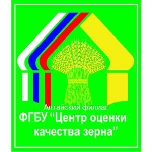Алтайский филиал ФГБУ «Центр оценки качества зерна» - итоги 1 полугодие 2017 года