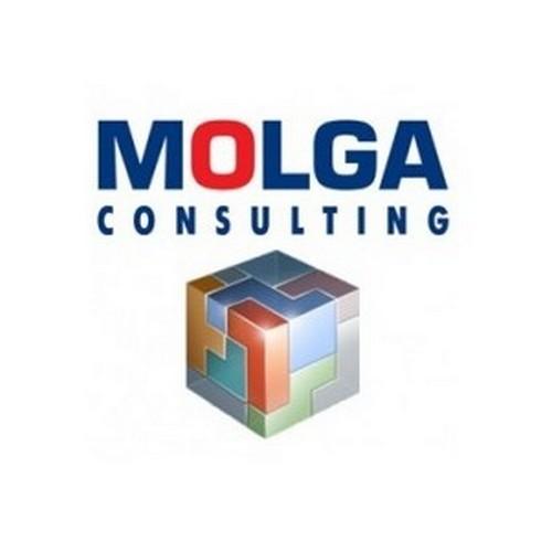 Алтыналмас и Molga Consulting автоматизировали HR на базе SAP