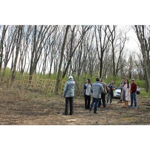 Активисты ОНФ провели рейд по факту вырубки деревьев