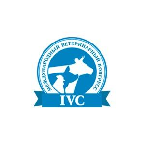 V Международный ветеринарный конгресс. Итоги