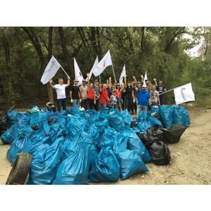 В акции ОНФ «Генеральная уборка страны» приняли участие 24 муниципалитета Волгоградской области