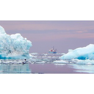 Компетенции вуза будут использованы для развития Арктики