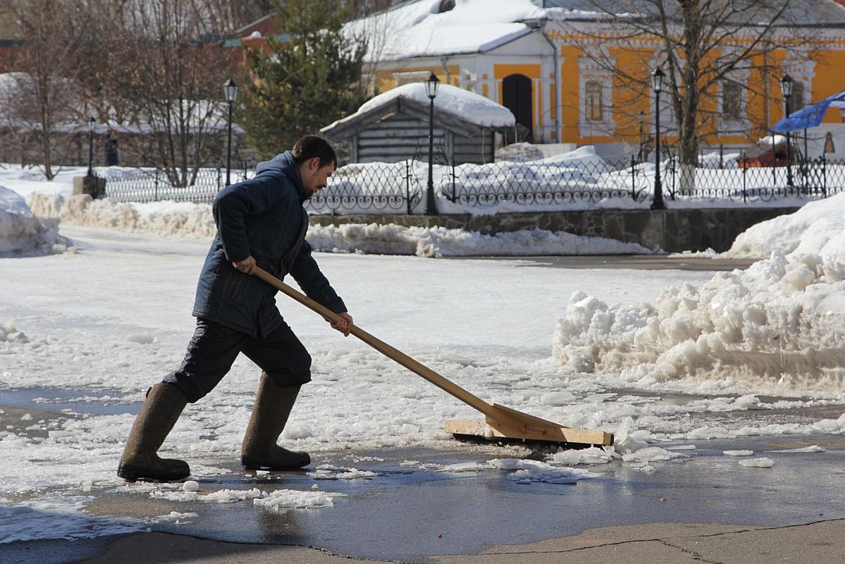 Добровольческий отряд кинокомпании «Союз Маринс Групп» на уборке в Чеховском районе