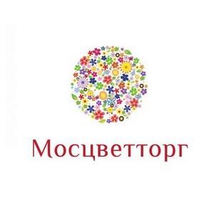 В ТЦ на ул. Соколово-Мещерская, д. 29 открылся «Мосцветторг»
