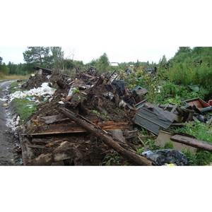 Новая свалка твердых бытовых отходов обнаружена в окрестностях с. Коларово