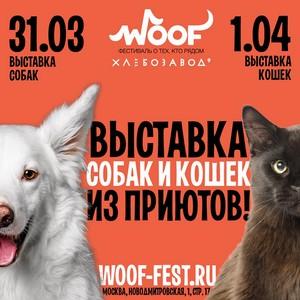 Фестиваль Woof в поддержку животных из приютов состоится 31 марта и 1 апреля 2018 г