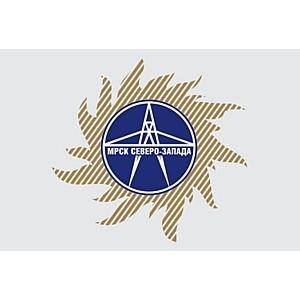 Компания «Скинкеа» провела обучение в филиале ОАО «МРСК Северо-Запада»