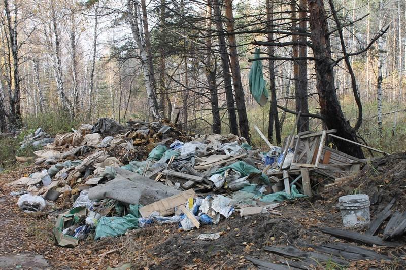 Челябинские активисты ОНФ провели рейд в рамках «Школы общественных экологических инспекторов»