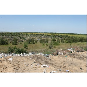 ОНФ просят власти Борисоглебска укрепить лесополосу полигона ТКО