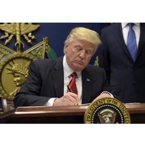В Совфеде не верят в то, что Трамп построит стену для борьбы с мигрантами