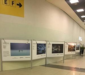 Снимки  участников Всероссийского фестиваля «Путешествуйте дома» первым показал Шереметьево