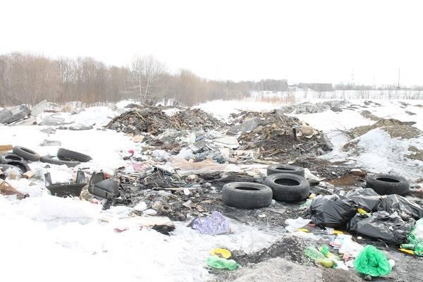 Активисты ОНФ на Камчатке проверили сообщение о свалке по улице Мурманской в Елизово
