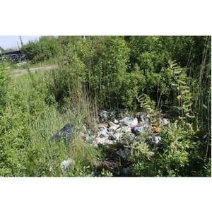 Активисты ОНФ в Санкт-Петербурге подвели итоги реализации проекта «Генеральная уборка» за полугодие