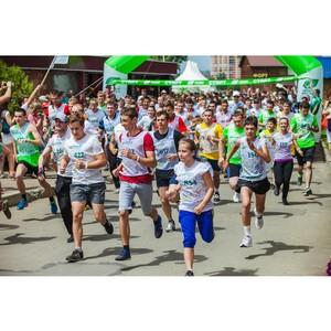 В Краснодарском крае состоится проект «Зеленый марафон 2016»