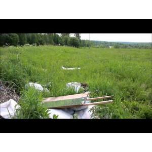 Видое: выявлены свалки в Воронинском сельском поселении