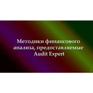 Методики финансового анализа, предоставляемые Audit Expert