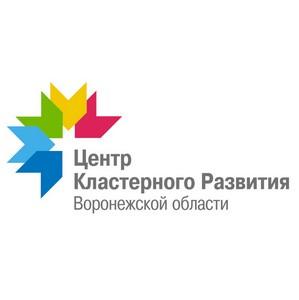 В «Центре кластерного развития Воронежской области» прошло совещание нефтегазового кластера