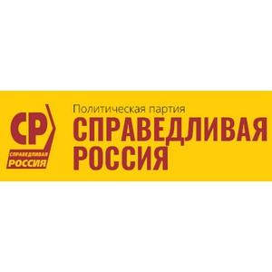 В Госдуме обсудили негативные последствия инициативы об ограничении ПЭТ-упаковки