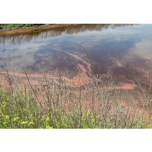 После обращения ОНФ прокуратура КБР предписала устранить экологические нарушения в Майском