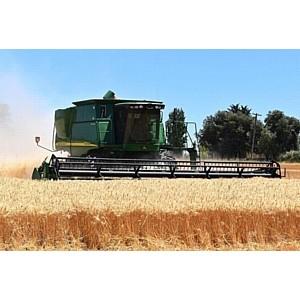 Эксперты Россельхозбанка проанализировали выручку орловских фермеров