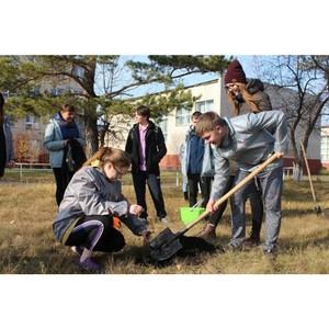 Курганская команда «Молодежки ОНФ» посадила деревья в рамках акции «Герои среди нас»