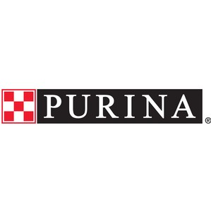 «Нестле Пурина» поддержала образовательно-реабилитационную программу для детей «По пути с хаски»
