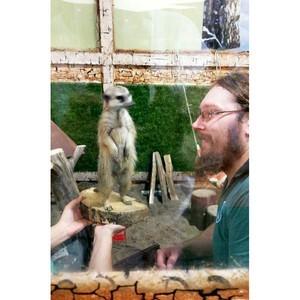 В контактном зоопарке Новосибирска поселились Амур, Енисей и Иртыш