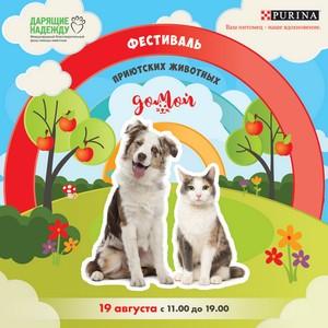 Большой благотворительный фестиваль «Домой!» под открытым небом